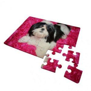 spuz30-5_30piece_jigsaw-puzzle
